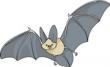 A clip art bat