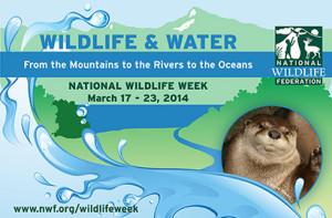 2014 National Wildlife Week graphic