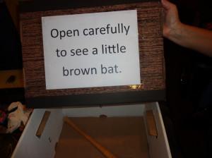Bat humor!