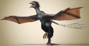 an artist rendering of a newly described dinosaur with bat-like wings.