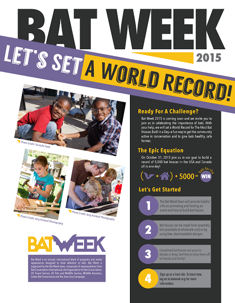 bat week flyer