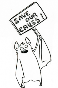 save-our-caves-199×300
