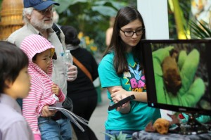 A photo of Blogger Rachael holding a bat detector during a bat demo at US Botanic Gardens
