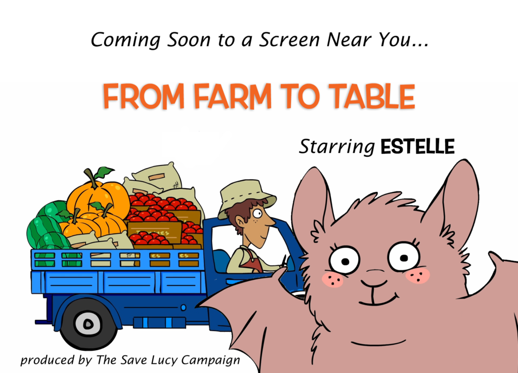 A cartoon announcing a new animated shot called Farm to Table and the batty star, Estelle