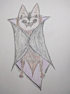 A hand drawing of a bat wearing a Dracula cape. It