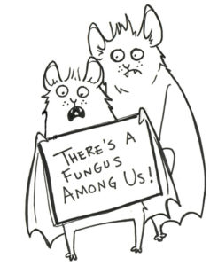 A cartoon of two bats. One is holding a sign that reads 'there's a fungus among us.' By Kim O'Keefe