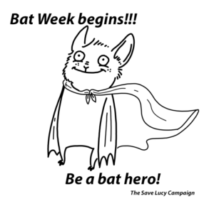 A catoon of a bat wearing a cape like a superhero.