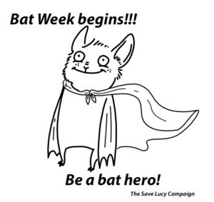A catoon of a bat wearing a cape like a superhero.