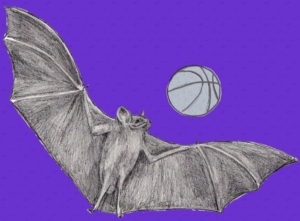 A drawing of a flying bat playing with a basketball.