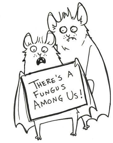 "A cartoon of two bats holding a sign that reads a"" there's a fungus among us"""